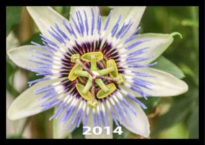 Kalender_2014_titel