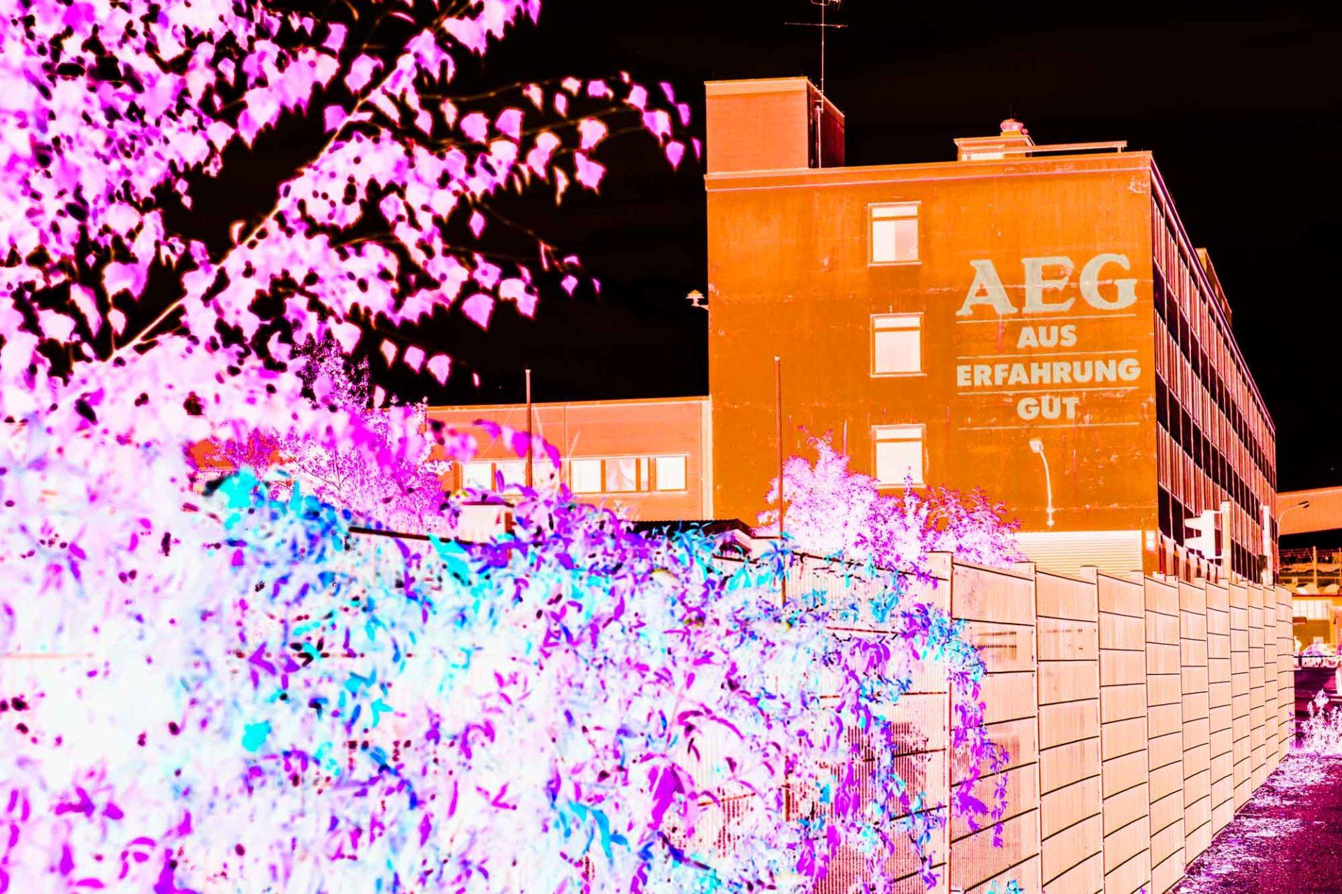 Offen auf AEG 2016